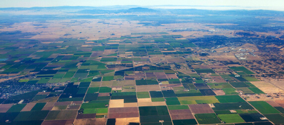 Top Crops In Central Valley California Interactive Web Map